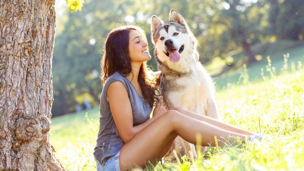 Страхование животных 2021